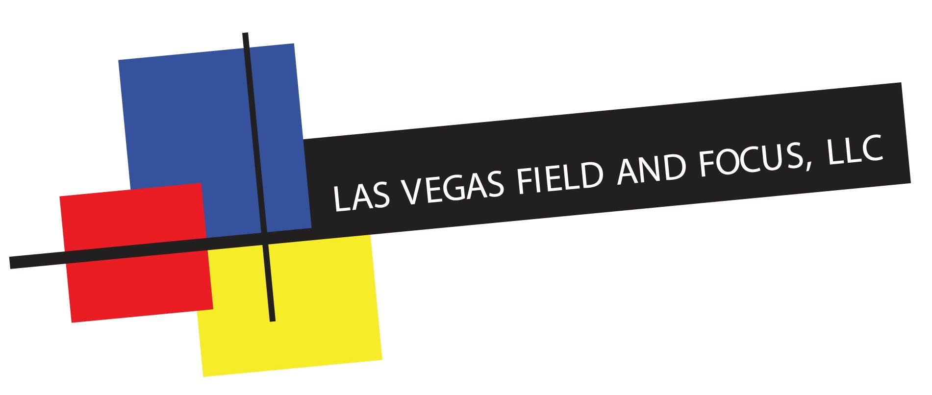 Las Vegas Field and Focus Group